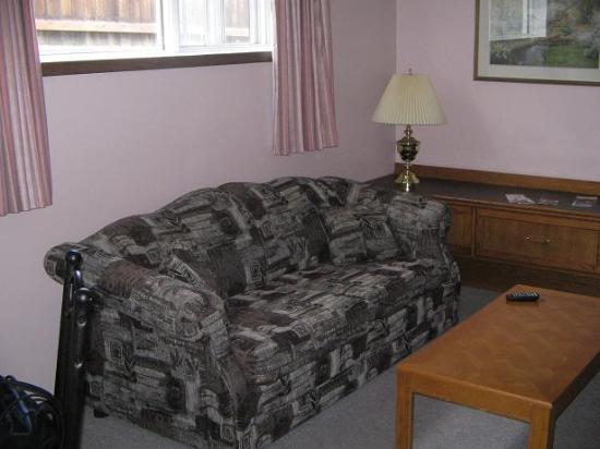 304 Geikie Street: view of living room