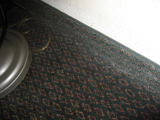 Holiday Inn Express Charleston: dirty carpets