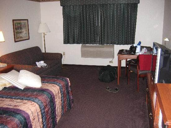 AmericInn Lodge & Suites Marshall: Room
