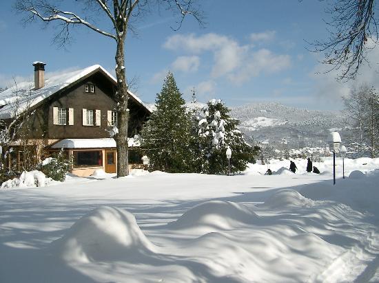 Hôtel Restaurant Le Chalet : photo du parc en hiver lors d'un de mes autres séjours