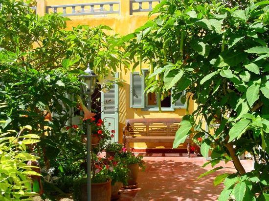 Dar Beldi: jardin
