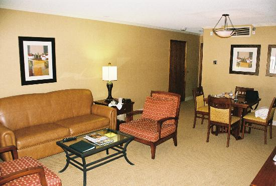 DoubleTree by Hilton Hotel Ontario Airport: Living Room 1