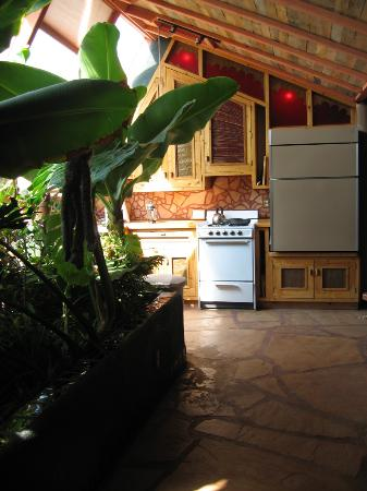 Earthship Biotecture: Kitchen