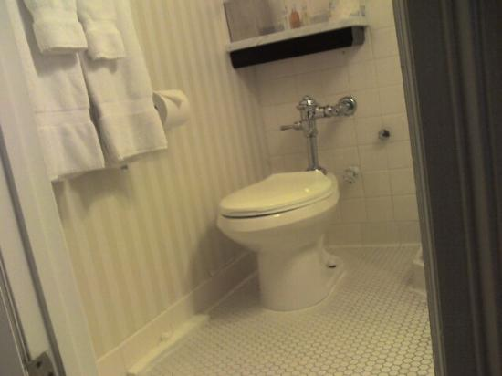 The Algonquin Hotel Times Square, Autograph Collection : A larger person might have trouble fitting on this toilet