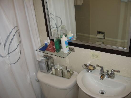 هيلتون أورينجتون / إفانستون: Smaller bathrooms in this hotel - no counter space