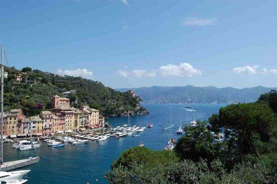 Portofino, إيطاليا: Portofino1