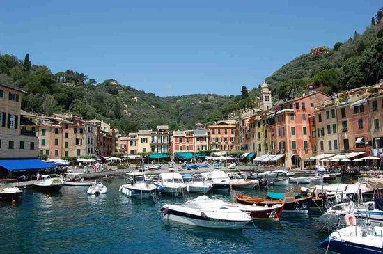 Portofino, إيطاليا: Portofino3