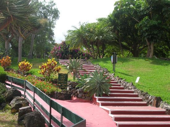 Parque Vacacional Eden: Jardines