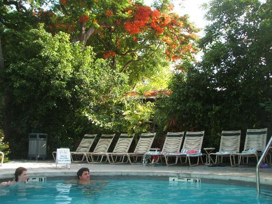 banyan picture of the banyan resort key west tripadvisor. Black Bedroom Furniture Sets. Home Design Ideas