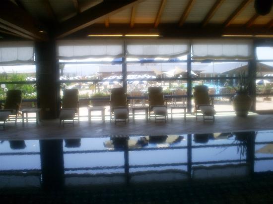 Sheraton Oran Hotel : piscine interieur