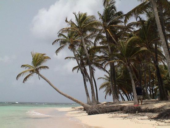 Marie-Galante, Guadeloupe: spiaggia a Marie Galante