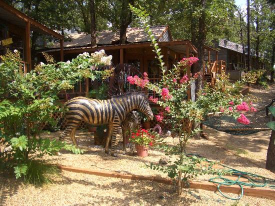 The Palm Cabanas : the Zebra Suite