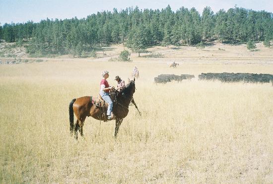 Runamuk Guest Ranch: Guest - working cattle