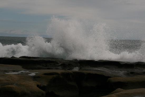 El Remanso Lodge: The Pacific