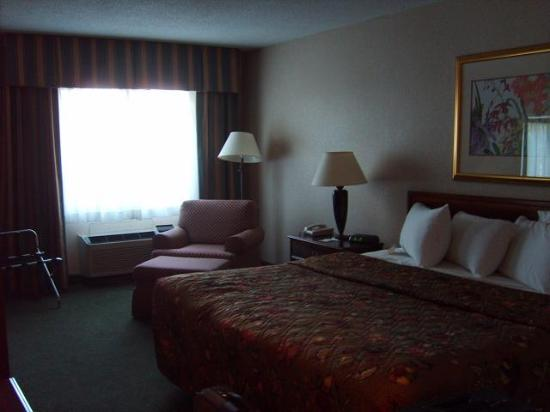 Holiday Inn Oneonta: Holiday Inn room