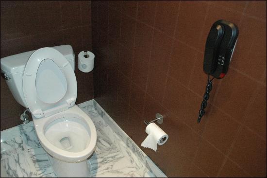 Red Rock Casino Resort U0026 Spa: Toilet  No Vent In Tiny Bathroom