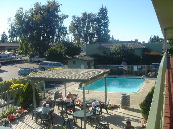 Motel 6 Napa : The pool area