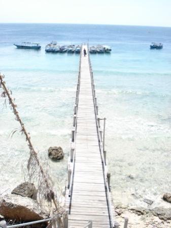 Naya Gawana Resort & Spa: Jetty of Menjangan Island