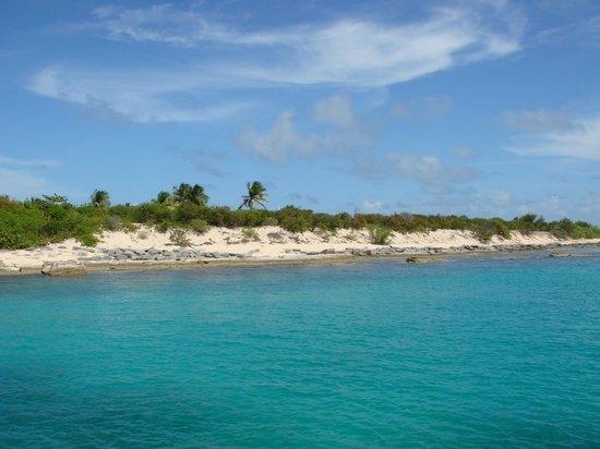 Fajardo, Puerto Rico: Snorkel Site