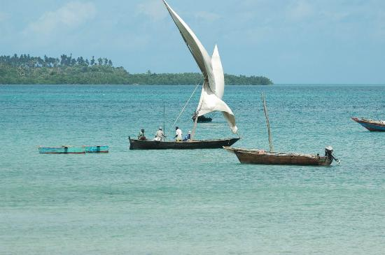 Pemba South Tanzania  city pictures gallery : south Pemba Picture of Pemba Island, Pemba Island TripAdvisor