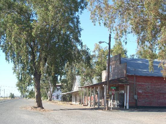 Blue Gum Motel: Street scene, old Hwy 99 in nearby Artois