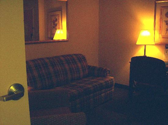 Quality Suites at Lake Wright : livingroom area