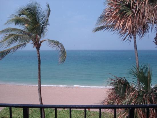 Costa del Sol: Balcony View