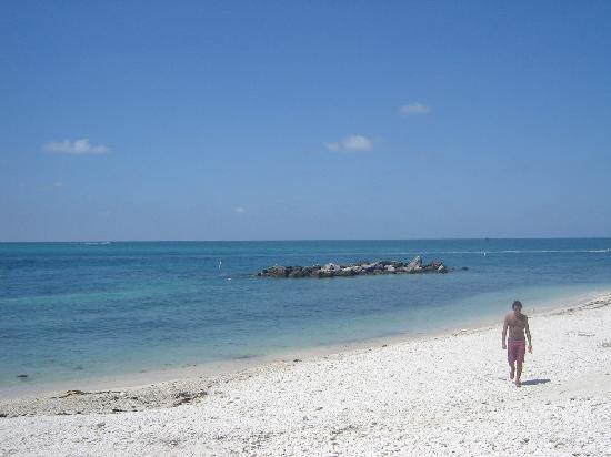 Los Cayos, las delicadas islas de Florida, resurgen tras