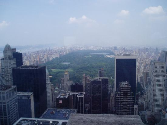Hotel Giraffe by Library Hotel Collection: View from Top of the Rock