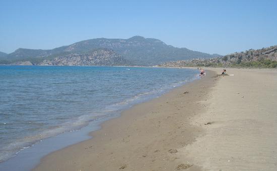Şahin Villa Aparts: Beach