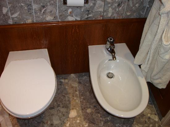 Crowne Plaza Toulouse : Bidet facination (fancy robe at right).