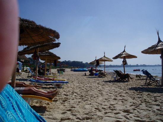 Hotel Les Citronniers: the beach