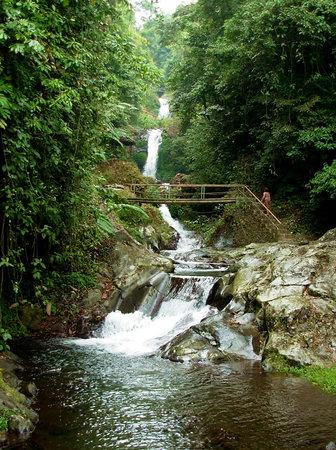 Gitgit Waterfall: GitGit Multi-Tier