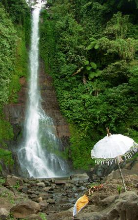 Gitgit Waterfall: GitGit (Primary)