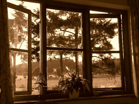 Hopton House Bed and Breakfast : Looking out of the window