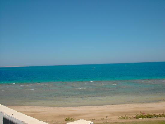 Mercure Hurghada Hotel: A great House reef at the Sofitel hotel with the lagoon out of site on the left side