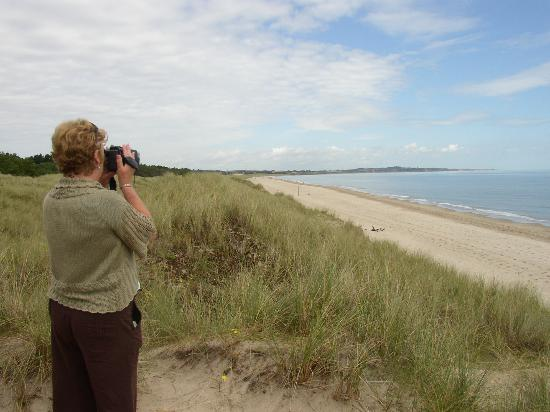 Birchwood House: Curracloe beach near Wexford