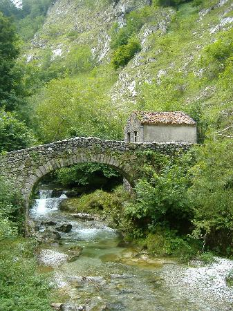 Parque Nacional de Picos de Europa : stone bridge