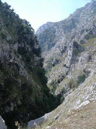 Parque Nacional de Picos de Europa : Cares Gorge