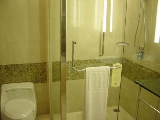 Ambassador Hotel Hsinchu: bath 2 - shower
