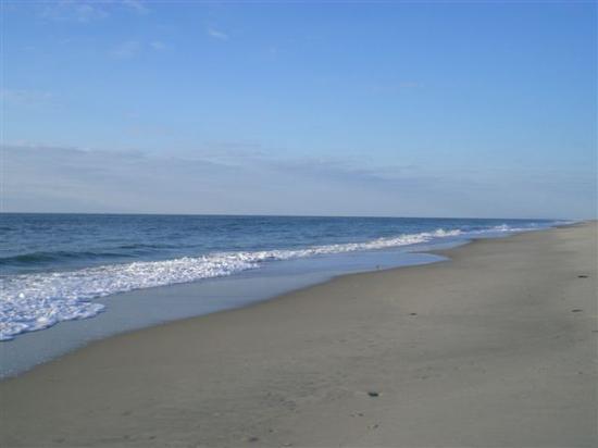 Va Beach Hotels Americas Best