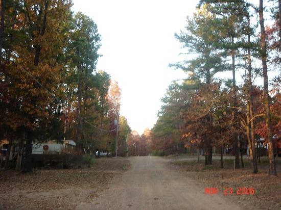 The Pineheart Retreat : The road outside the cabin