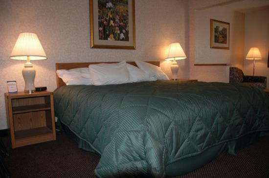 Comfort Inn: King size bed in the suite