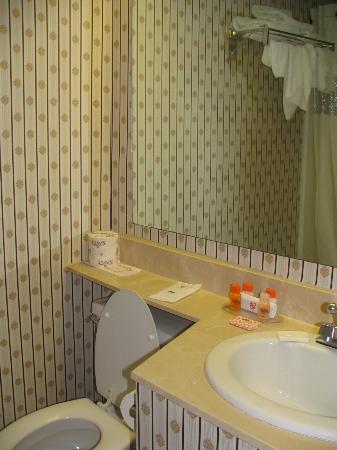 Howard Johnson Hotel South Portland : Inside the bathroom.