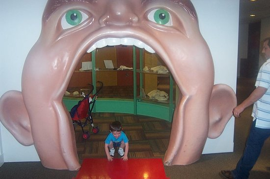 Perot Museum of Nature and Science: in the teeth exhibit room