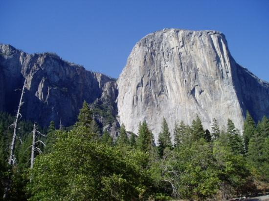 Yosemite Rose Bed & Breakfast: appr 45min to El Capitan