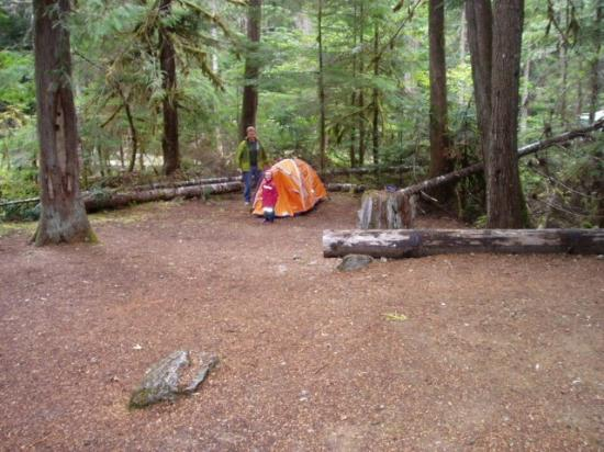 Colonial Creek Campground - Stehekin Valley Trail: site 18