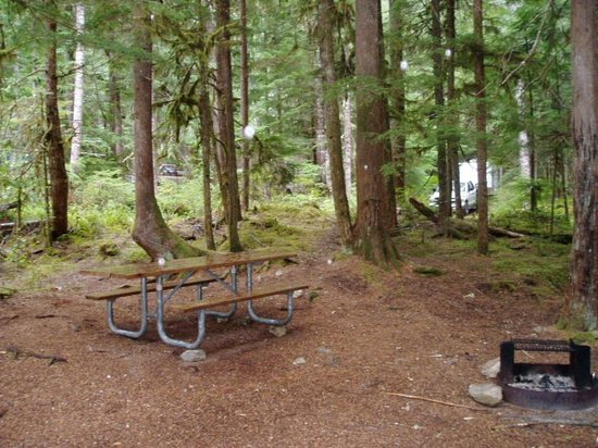 Parque Nacional North Cascades, WA: site 44 - table and fire pit