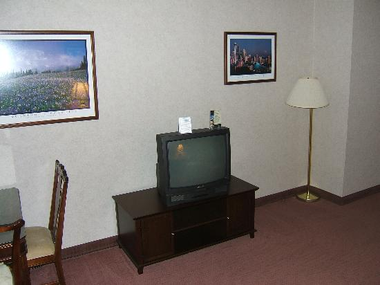Clarion Hotel Seattle Airport: TV & furnishings
