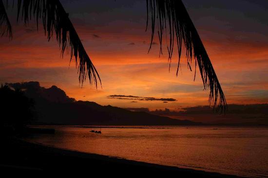 Sea World Club Beach Resort: Sunset on the beach
